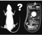 Overclock.pl - Polowanie na mysz dla gracza